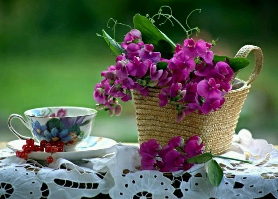 Открытки доброе утро прекрасного дня внесения красота летние, любви прикольные картинках