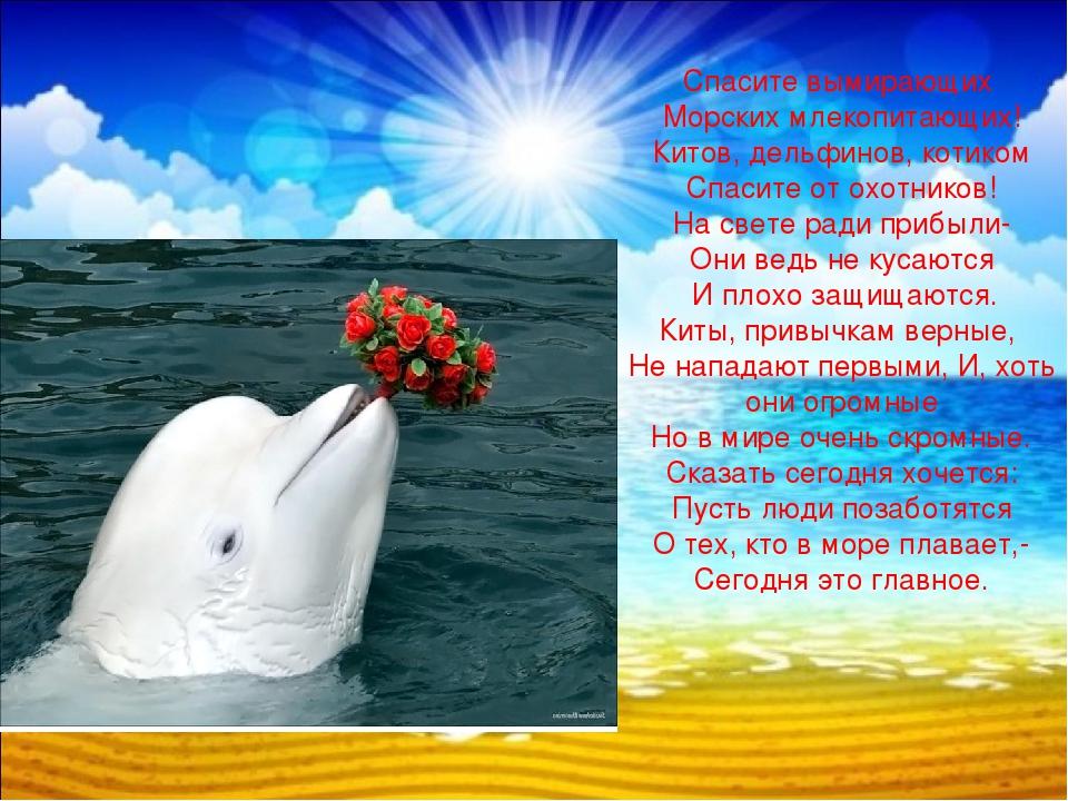 Картинки с дельфинами со стихами