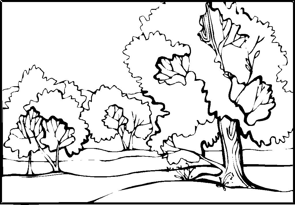 Днем, картинки пейзажи природа разукрашки на лист а4