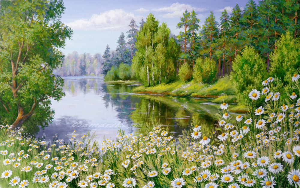 Днем, картинки ромашки поле река