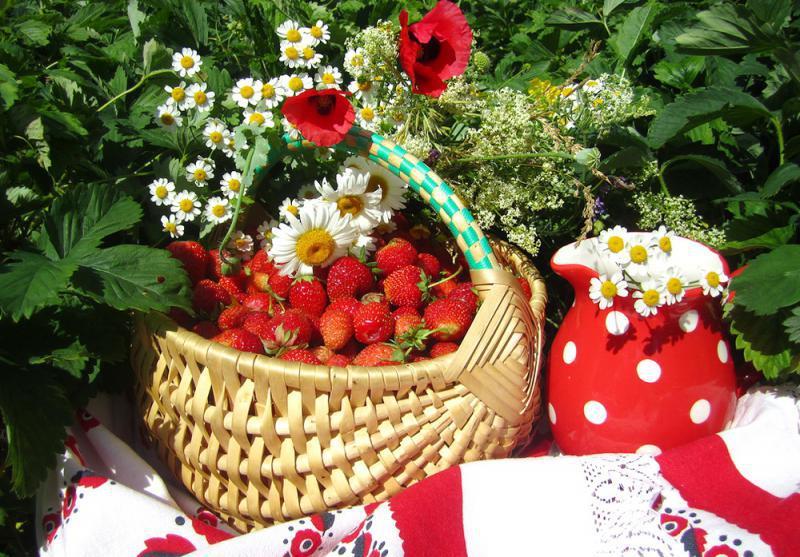 Прекрасного летнего дня и хорошего настроения, днем