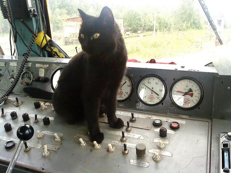 прикольные фото с машинистами локомотивов для