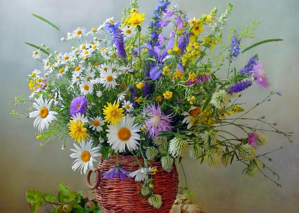 приготовить вкусный букет полевых цветов картинки гифки таком цветущем