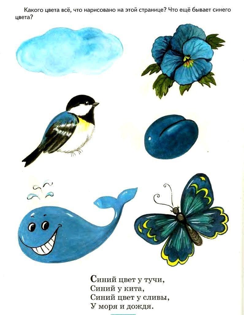 картинки и стихи для изучения цветов мельников редко появляется